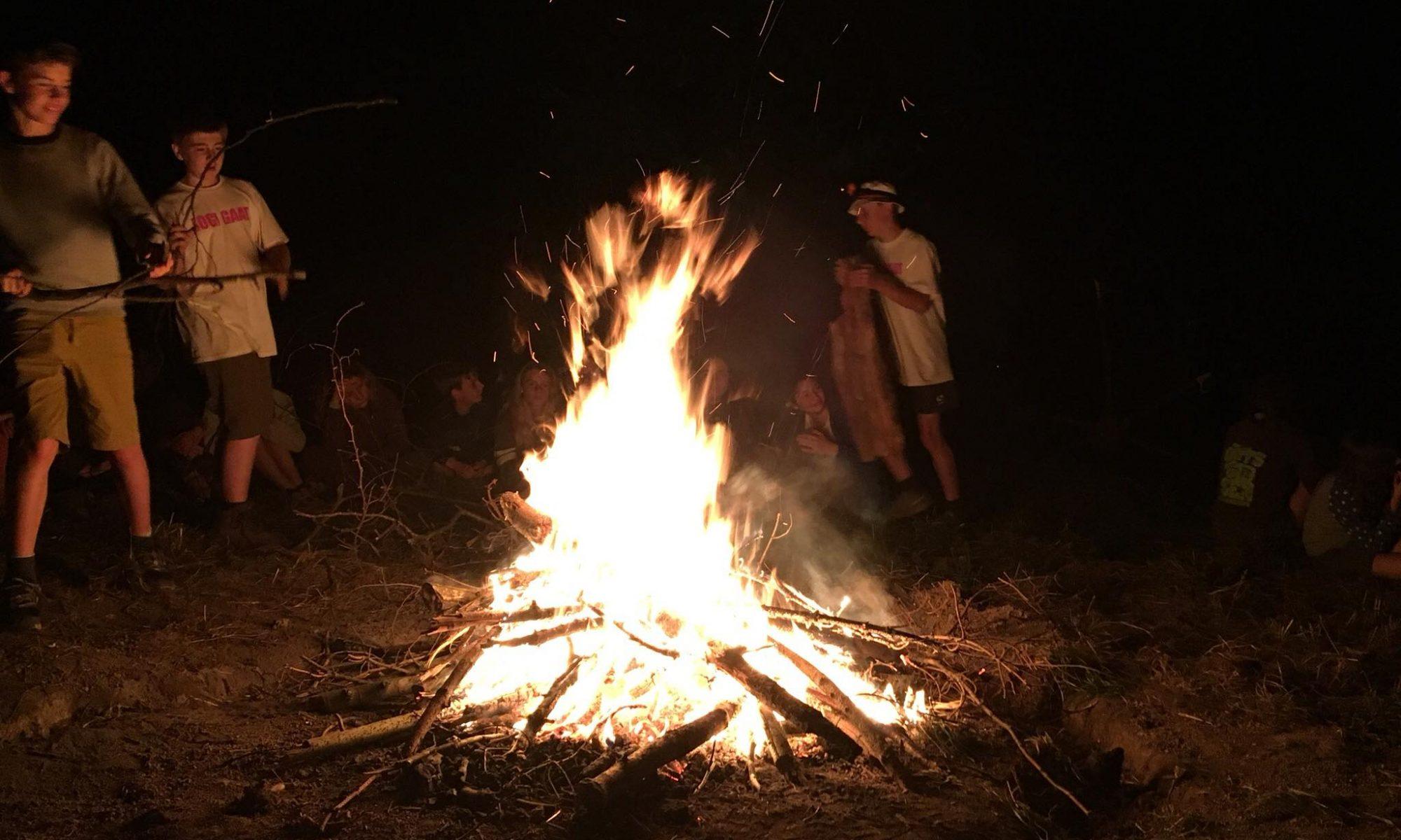 Scouts 7de Sint-Aleydis Deurne